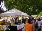 Diamond Head Arts & Crafts Fair at Kapiolani Community College image 18