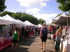 Diamond Head Arts & Crafts Fair at Kapiolani Community College image 33